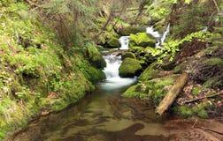 Flod vattenfallkanjon Royaltyfria Bilder