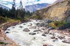 Flod Vilcanota - drevritten till Machu Picchu Fotografering för Bildbyråer