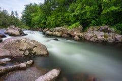 Flod Vit Arkivbilder