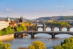 Flod Vltava med broar i Prague, träd i förgrunden, Tjeckien Fotografering för Bildbyråer