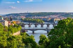 Flod Vltava med broar i Prague, trädsidor i förgrunden, Tjeckien Royaltyfria Foton