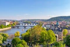Flod Vltava med broar i Prague, växter i förgrunden, Tjeckien Royaltyfria Bilder