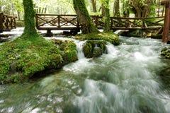 Flod Vrelo, rätt som är skattskyldig av floden Drina arkivbild