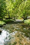 Flod Vrelo, rätt som är skattskyldig av floden Drina royaltyfri foto