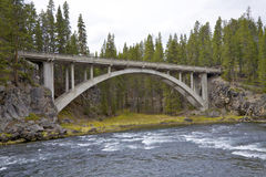 flod yellowstone Royaltyfri Bild