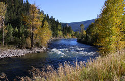 flod yellowstone fotografering för bildbyråer