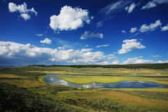 flod yellowstone Royaltyfri Bild