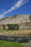 flod yellowstone Arkivfoto