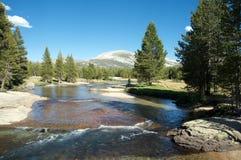 flod yosemite Arkivbild