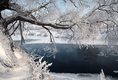 Flod Zai Arkivbild