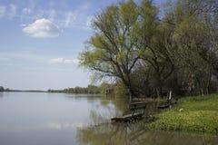 Flodbänk Arkivbilder