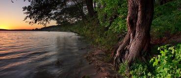 Flodbank Arkivbild