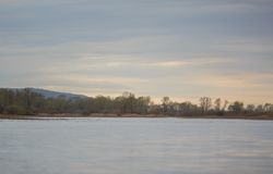 Flodbank Arkivfoto