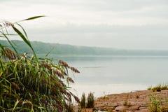 Flodbank i regnigt väder Royaltyfria Bilder