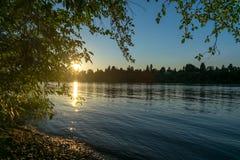 Flodbank på skymning Arkivfoto