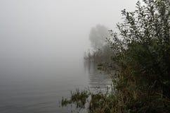 Flodbanker på en dimmig morgon Royaltyfri Bild
