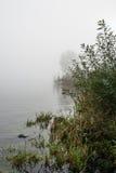 Flodbanker på en dimmig morgon Arkivbild