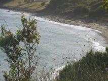 Flodbild arkivbild