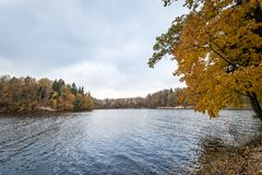 FlodDaugava nära Koknese i Lettland arkivfoto