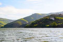 FlodDouro dal, Portugal Royaltyfri Fotografi