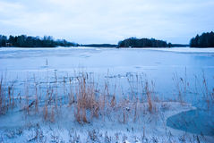 Floded field in winter twilight Royalty Free Stock Photography