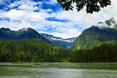 Floden Arkivfoto