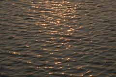 Floden av guld Arkivfoton