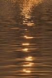 Floden av guld Royaltyfri Foto