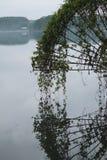 Floden av livstid Arkivbild