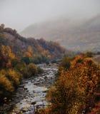 Floden böjer till och med en färgrik höstskog royaltyfri fotografi