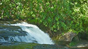 Floden bryter ner från avsatsen - skogvattenfall Royaltyfri Fotografi