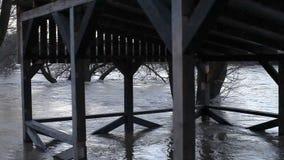 Floden, efter duscharna kom ut ur kusterna stock video