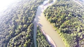 Floden flödar i skogen stock video