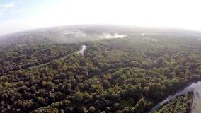 Floden flödar i skogen arkivfilmer