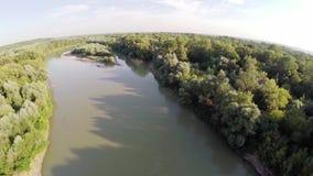 Floden flödar i skogen 11 arkivfilmer