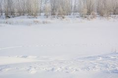 Floden fryste i vintern Is på floden Arkivfoto