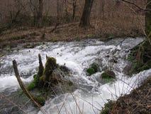 Floden Grza i Serbien Arkivfoto