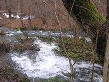 Floden Grza i Serbien Fotografering för Bildbyråer