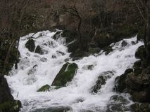 Floden Grza i Serbien Royaltyfri Bild