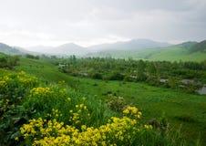 Floden i bergdalen Fotografering för Bildbyråer