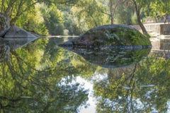 Floden i berget, marginaler med vaggar och vegetation royaltyfri foto
