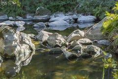 Floden i berget, marginaler med vaggar och vegetation arkivbild