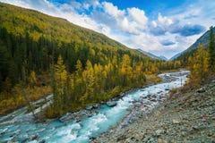 Floden i den Akkem dalen i naturliga Altai berg parkerar, omgivning av det Belukha berget arkivfoto