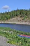 Floden i den polara Urals soliga dagen Arkivfoton