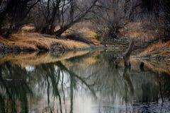Floden i höst Royaltyfri Fotografi