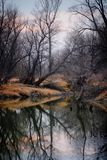 Floden i höst Arkivbilder