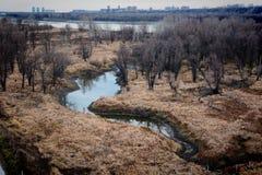 Floden i höst Royaltyfria Bilder