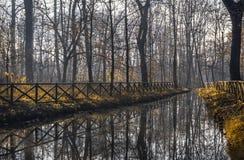 Floden i Monzaen parkerar Arkivbilder