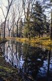 Floden i Monzaen parkerar Arkivfoto