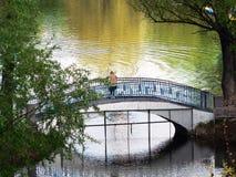 Floden i Moskva, bron mellan träden över floden royaltyfri fotografi